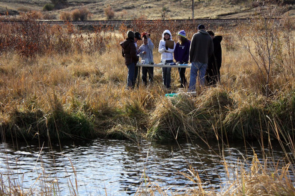 A restored reach of Silver Bow Creek near Butte, Montana, shows a developing riparian plant community.