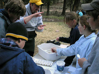 Montana Tech professor and CFWEP volunteer Dr. Chad Okrusch helps students identify aquatic insects.