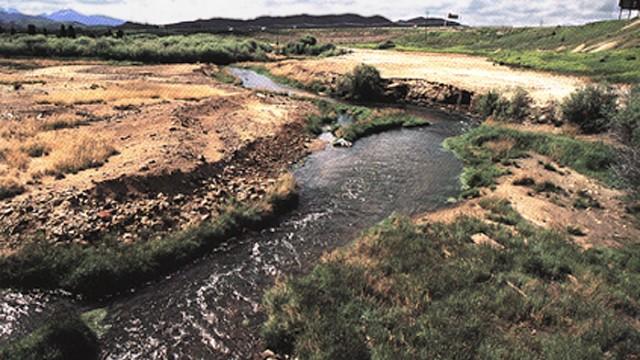 streamside tailings